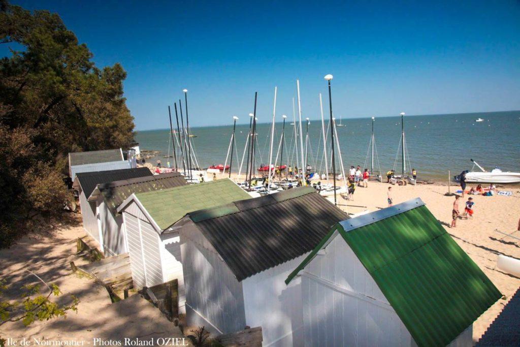 Ile de Noirmoutier : bois de la chaize