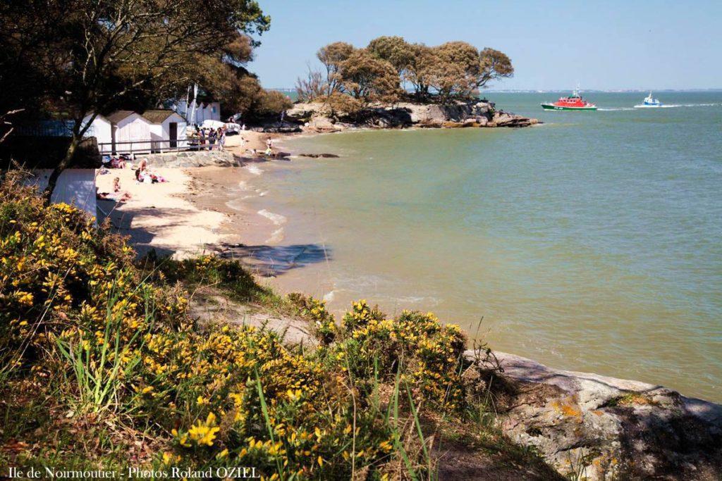 Ile de Noirmoutier : le bois de la chaize