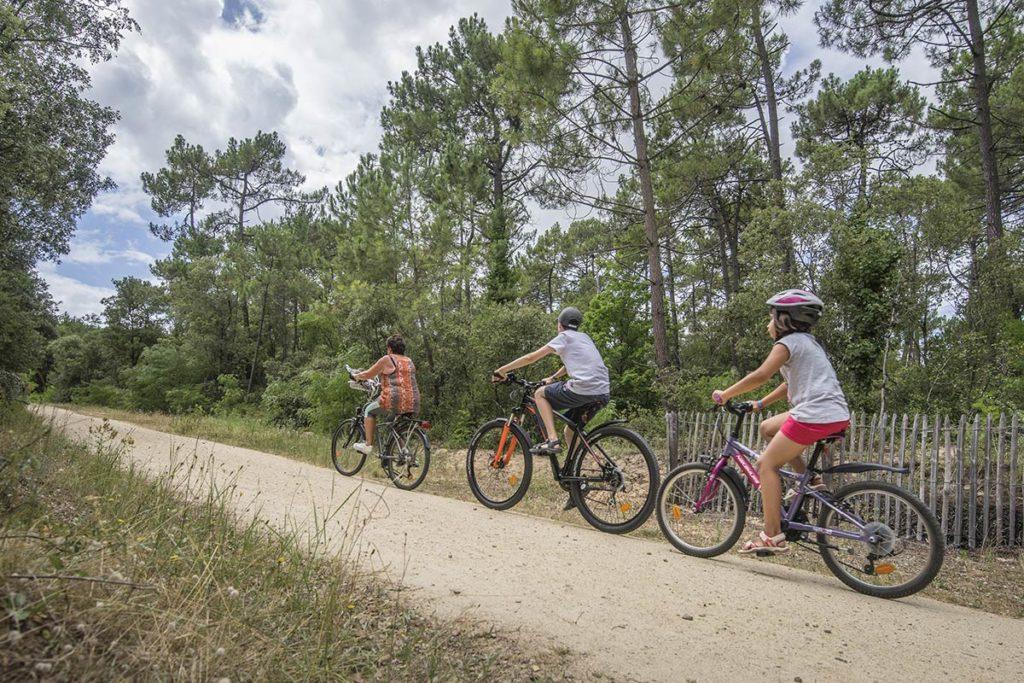 Pistes cyclables forêt Saint Jean de Monts